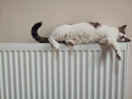 Des radiateurs électriques performants pour rénover votre installation de chauffage