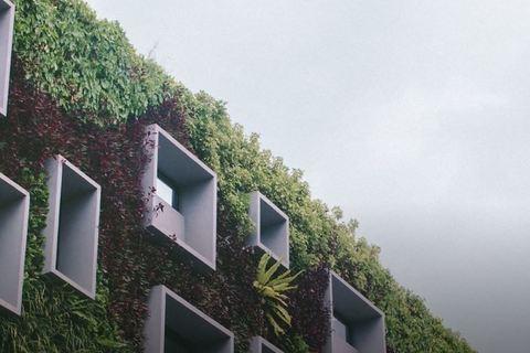 Immer umweltfreundlichere Gebäude