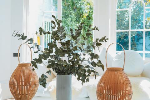 Ihr Zuhause zu dekorieren, ohne die Bank zu sprengen, ist möglich! Hier sind einige Tipps.