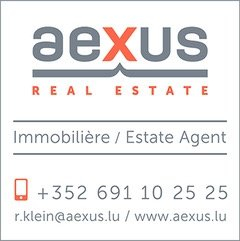 aexus Real Estate